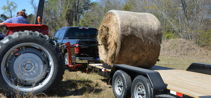 Hay Bale Movers, Spears, Feeders, & More