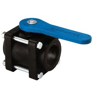 2 Inch Ball Valve Fpt. 1-1/2 Inch Port