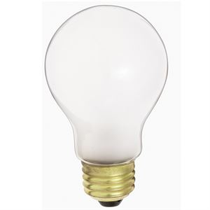 40w Frosted Light Bulb 2pk