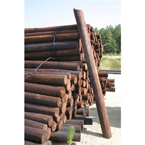 Creosote Treated Post, 3 to 4 In. Diameter, 8 Ft. Tall