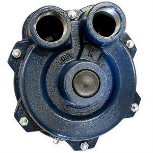 Delavan ™ Turbo 90 ™ Pump, Cast Iron