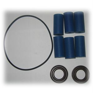 Repair Kit For Series Roller Pump