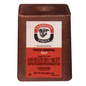 Trace Mineral Salt Block, Champions Choice, 50 Lb