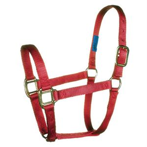 Large Horse Halter, Red