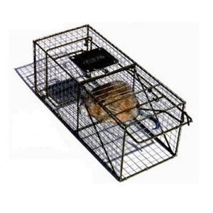 Animal Trap Small Cats Squirrels