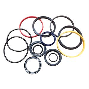 Bore Rod Chief Hydraulic Cylinder Repair Kit