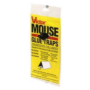 Mouse Glue Trap Per Bag
