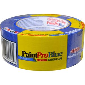 Painter Day Blue Tape Mm M