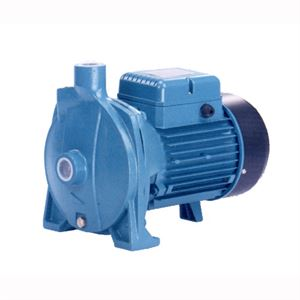 Cast Iron Centrifugal Water Pump Hp