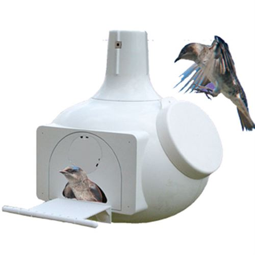 9 In. Wide Purple Martin and Swallows Gourd