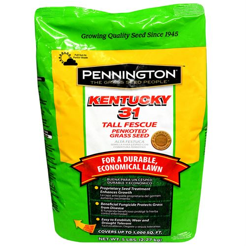 Kentucky 31, Penkoted® Tall Fescue Grass Seed